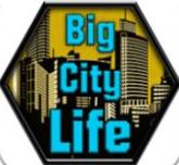 大城市的生活模擬器