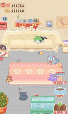 奇妙猫之家