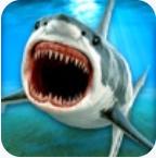 鯊魚海底賽車