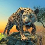 猎豹模拟器
