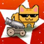 空闲的猫炮