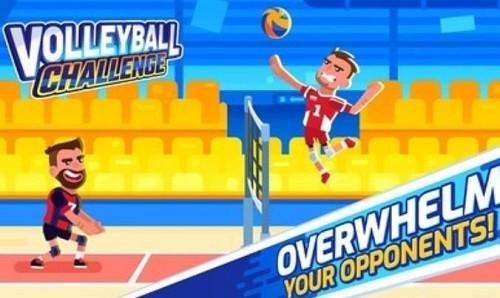 排球挑战赛 (4)