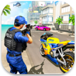 美国警察摩托追逐