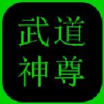 武道神尊  v3.0.5 无限灵气版