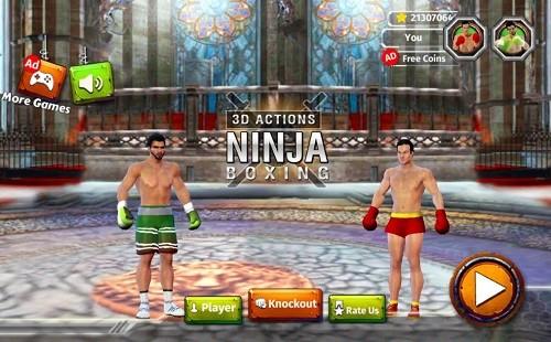 拳击明星赛 (4)