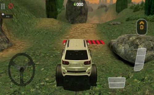 模拟极限越野驾驶 (5)