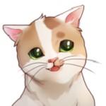 猫咪流浪记
