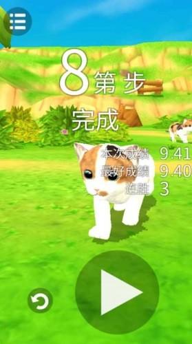 猫咪流浪记 (1)