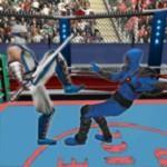 忍者机器人格斗