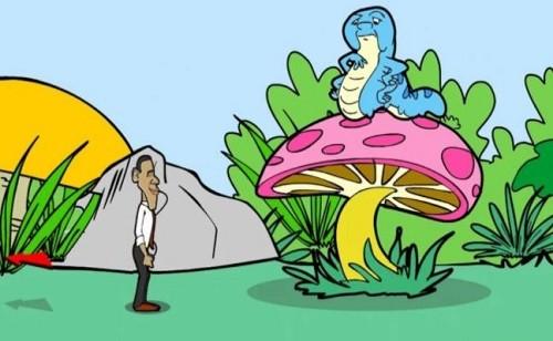奥巴马仙境救援